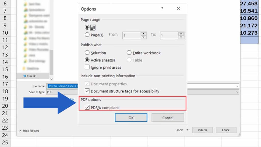 How to Convert an Excel File into PDF - PDF Options