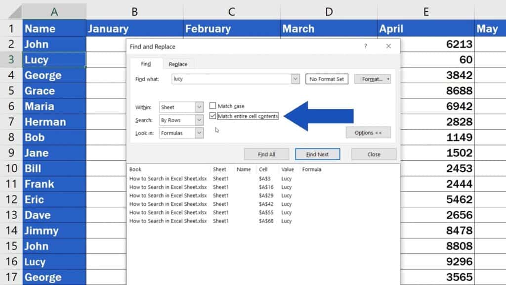 How to Search in Excel Sheet -  option 'Match entire cell contents'