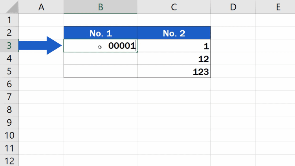 How to Add Leading Zeros in Excel - Enter data starting with zero