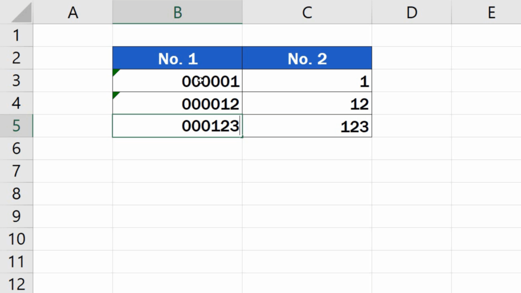 How to Add Leading Zeros in Excel - Insert leading zeros to the numbers